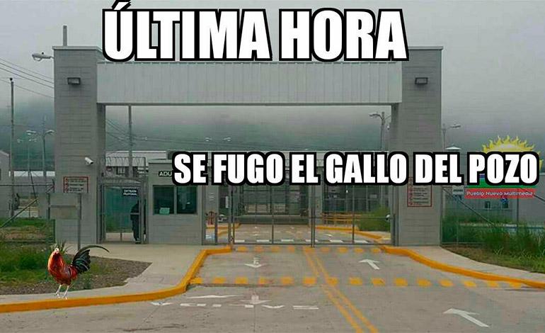"""Con este meme, el autor ironiza sobre la seguridad en """"El Pozo""""."""