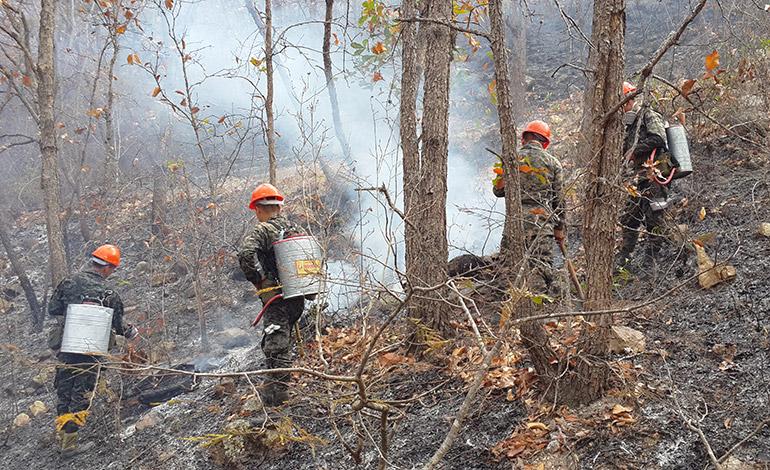 Más de 3,000 militares han sido entrenados para controlar los incendios forestales, entre las actividades han sido preparados para hacer rondas.