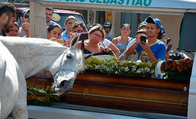 Los dos tenían una relación muy estrecha, según los que los conocían. Miles han sido movidos por la despedida del caballo y han compartido la historia en línea.