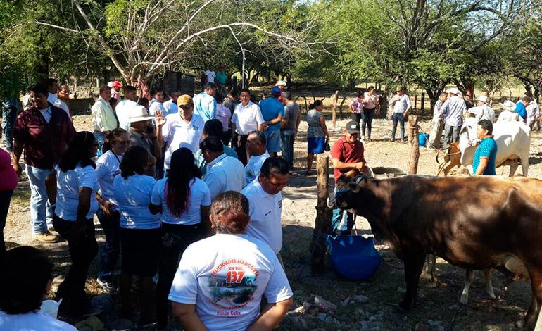 Concurso de la vaca lechera y otras actividades se realizaron durante la festividad.
