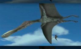 Este dinosaurio podría ser el más grande que voló sobre la Tierra