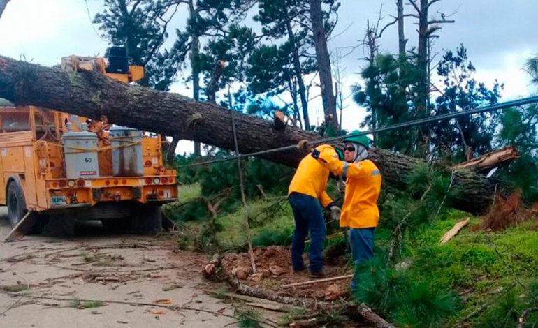 Vientos huracanados dañan red eléctrica en zona norte