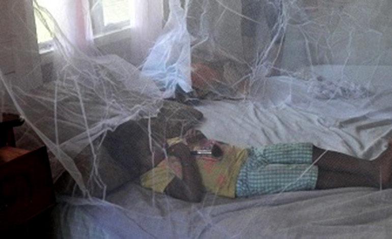 Distribuyen 12 mil mosquiteros para prevenir la malaria