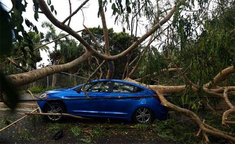 """El huracán Irma y """"Despacito"""" entre lo más buscadas en Google este año"""
