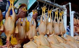 Honduras logra certificación que le permite exportar carne de pollo a EUA