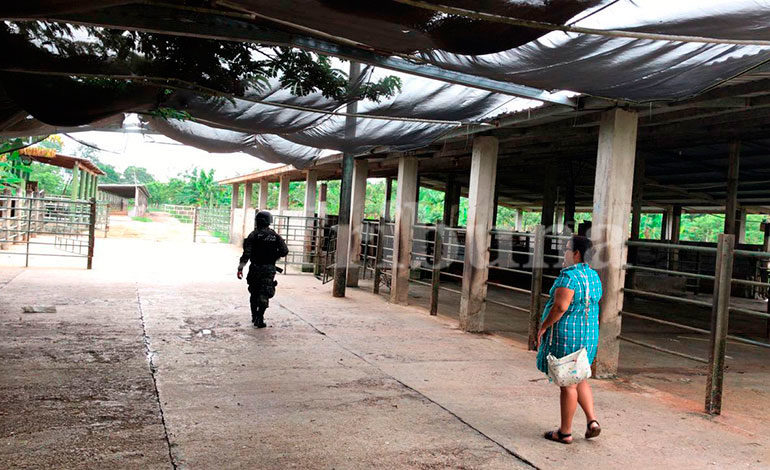 """Otra hacienda denominada """"Vista Hermosa"""", en Omoa, Cortés fue asegurada ayer, está a nombre de Francis García Cárcamo."""