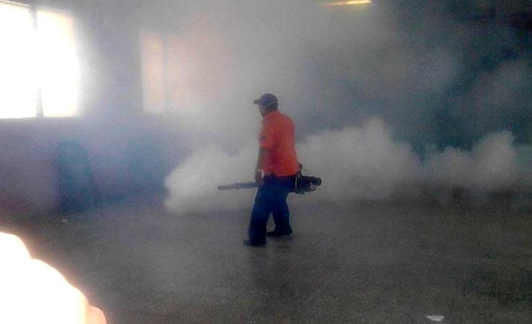 Fuerte ataque al dengue