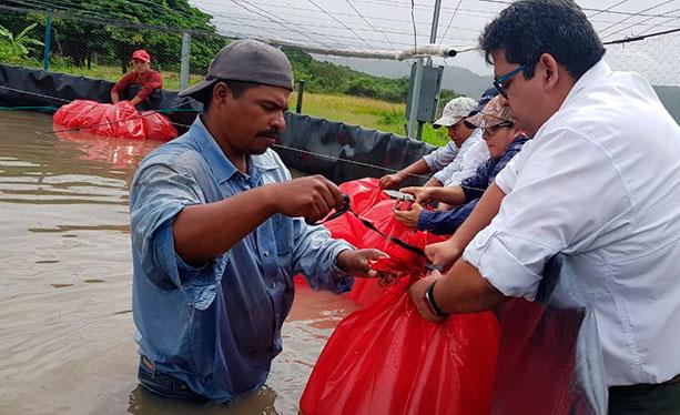 Gobierno apoya a productores acuícolas de Comayagua