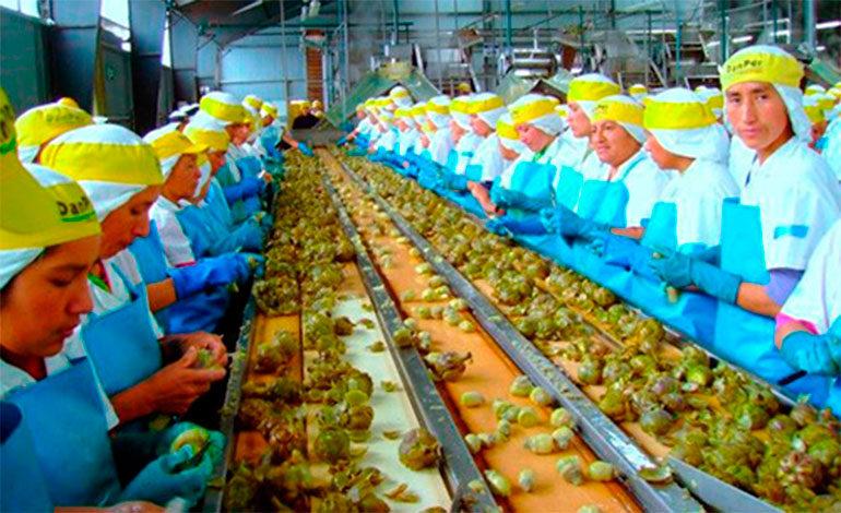 Honduras debe abandonar esa idea de la economía de agroexportación