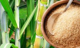 Unos 200 mil empleos genera la industria azucarera