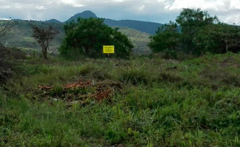 Vecinos denuncian intentos de invasión de su única área verde