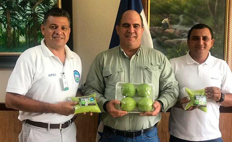 Productores de Guayaba solicitan la exoneración del 15% ISV