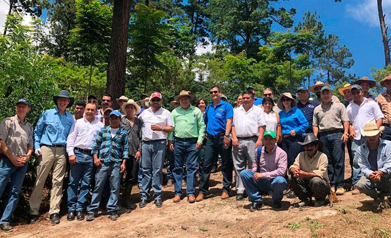 Evalúan resultados de proyectos financiados por CRS en Intibucá