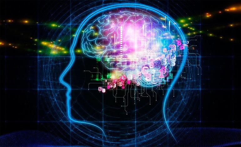 Estudio revela que el cerebro se nutre de experiencias pasadas para mejorar