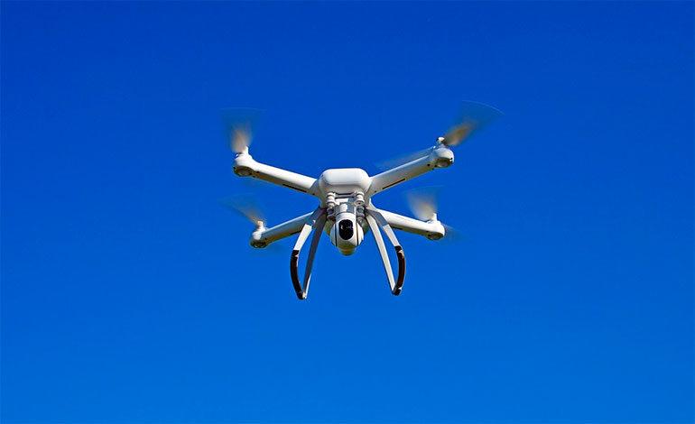 Inspirados en las avispas, desarrollan un dron capaz de mover cargas pesadas