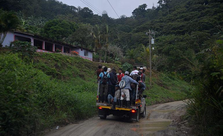 Policías y militares a proteger corte de café en El Paraíso