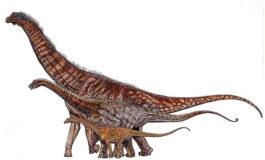 Descubren el dinosaurio de cuello largo más antiguo del mundo