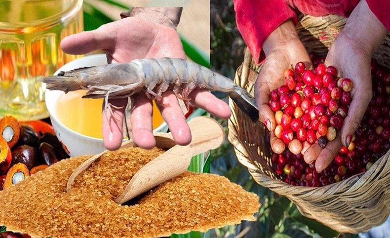 Bienes exportables hondureños cierran año con fuerte desplome