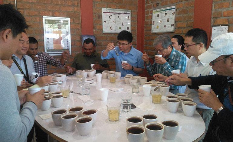 Compradores de café de Taiwán están en Honduras