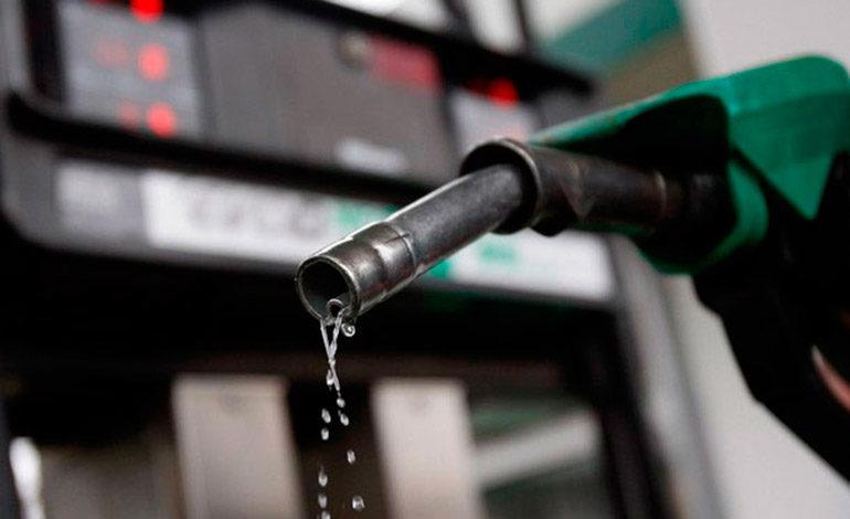 Industriales proponen fortalecer el rubro de los biocombustibles