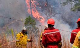 Más de 31.400 hectáreas han sido destruidas en Honduras por 600 incendios