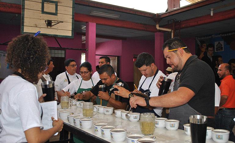De la comunidad de Potrerillos es el mejor café de Siguatepeque