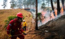Sofocados dos incendios en Olancho y Cortés