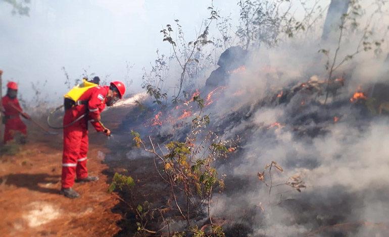 Conadeh: incendios, plagas y sequía obstaculizan el desarrollo de Honduras