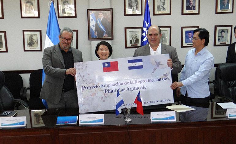 Taiwán amplía Proyecto de Plántulas Sanas de Aguacate