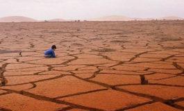 Sobrevive un niño de cinco años que se perdió 24 horas en el desierto