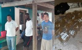 """Caen con droga de Jamaica cinco supuestos miembros del cartel de """"Santa Elena"""""""