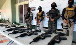 Fusina: Decomisadas más de 600 armas este año