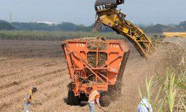 Honduras a definir la cuota de azúcar al mercado inglés