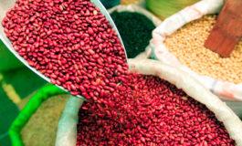 La banca solidaria financiaría producción de granos básicos