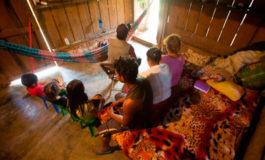 Según estudio: Un total de 2.7% de hondureños se desplazaron entre 2014 y 2018
