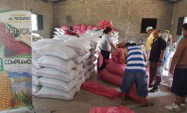 Productores de frijol exigen pago de L12 millones al IHMA