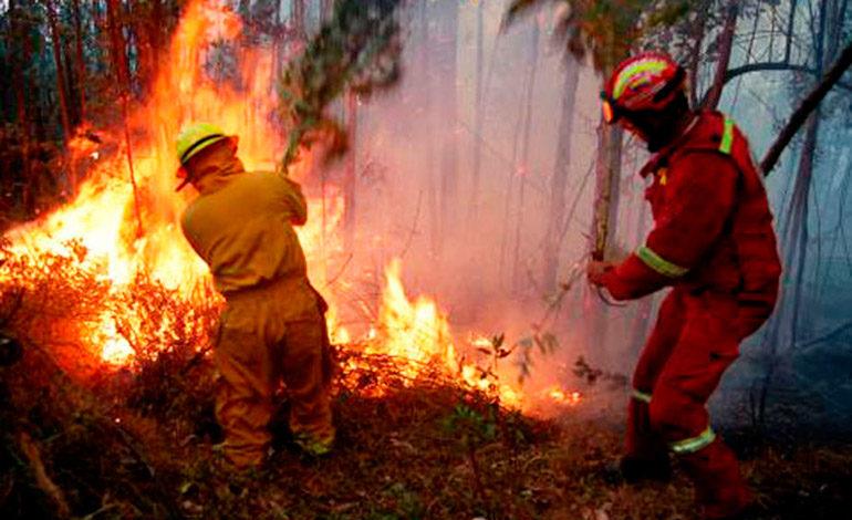 Incendios forestales en Honduras han arrasado 22.132 hectáreas
