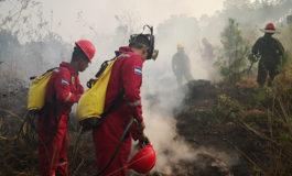 Las cuadrillas forestales conviven con el alto riesgo