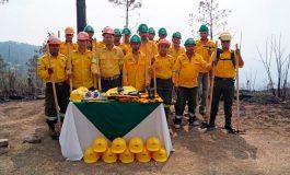 Grupo Terra une esfuerzos con ICF para proteger los bosques