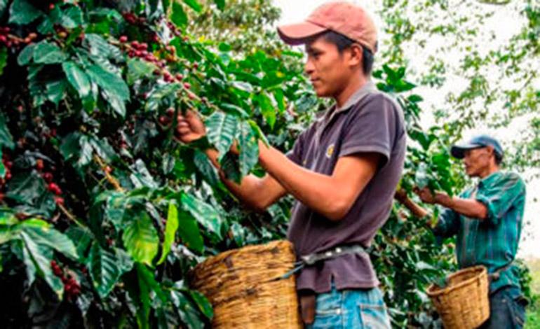 Programas de desarrollo que peligran en Honduras con suspensión de ayudas de EEUU