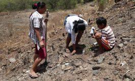 """ONU: La crisis alimentaria del Corredor Seco Centroamericano es """"invisible"""""""