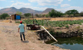Alcaldía municipal prohíbe bombear agua del río Choluteca