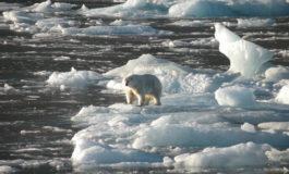 Estudio del suelo helado del Ártico muestra el aumento de las temperaturas