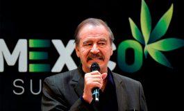 Vicente Fox plantea legalizar marihuana para frenar violencia y crear empleos