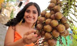 Olanchanos celebran Tercer Festival del Vino de Coyol