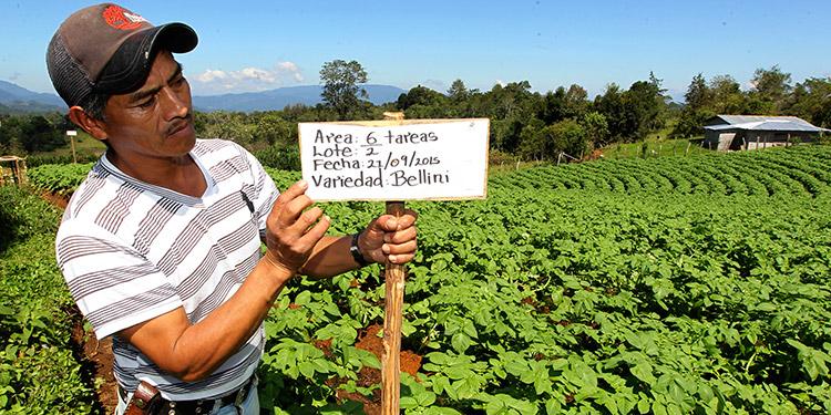 La fundación ayuda a las familias rurales a transitar de una economía de subsistencia a una empresarial.