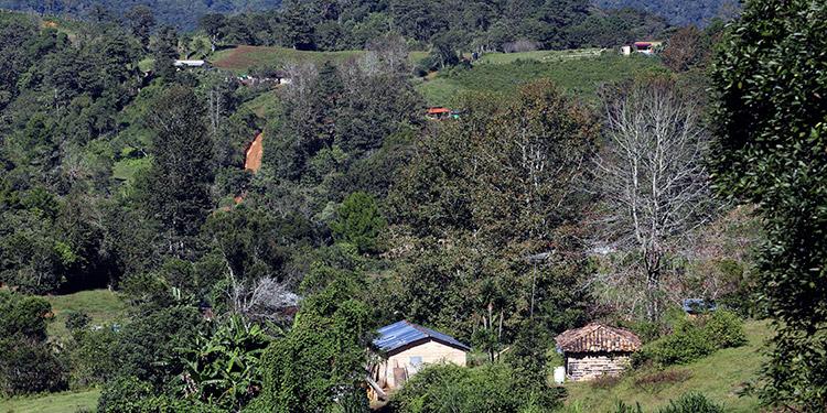 FUNDER, llega a las comunidades lejanas a través de las cajas rurales.