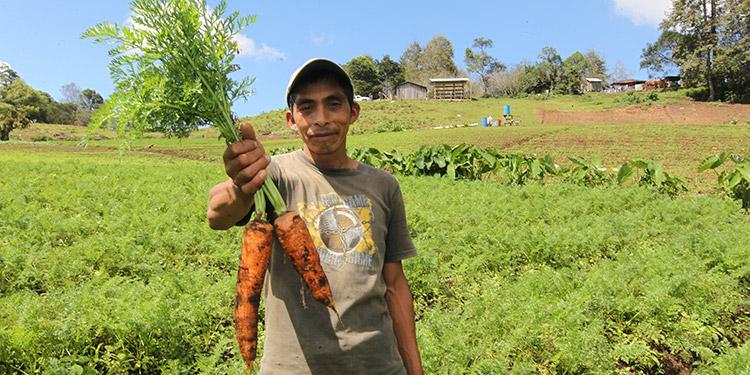 FUNDER apoya a los agricultores.