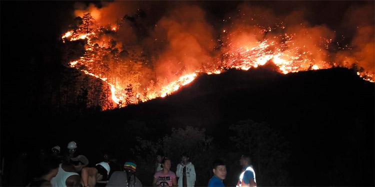 El incendio forestal en Valle de Ángeles alcanzó temperaturas cercanas a los 10,000 grados centígrados.