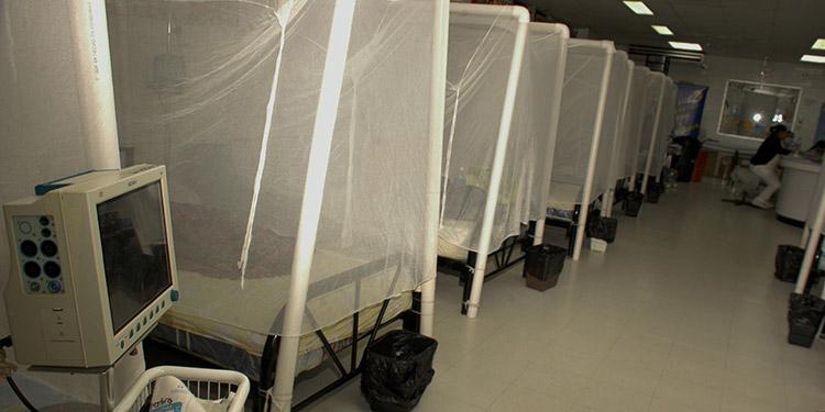 La Secretaría de Salud realiza estudios para conocer por qué la cepa del dengue es más agresiva en comparación a epidemias anteriores.